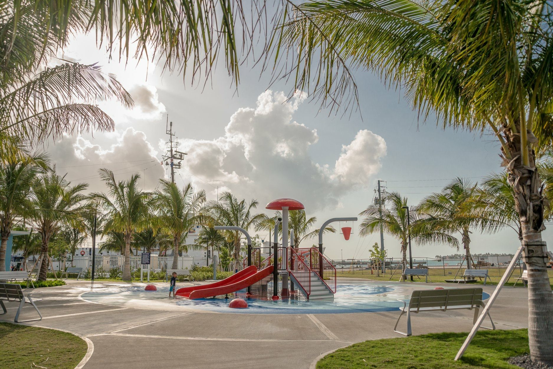 Playground slide in City Park surrounded by Palm trees