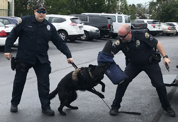 K9 Unit dog with two officers